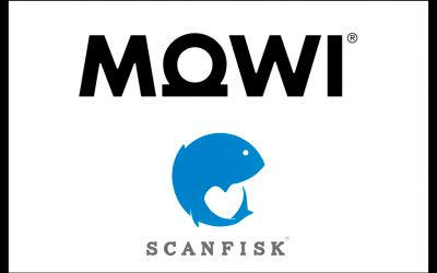 SCANFISK SIGNS A SUPPLY AGREEMENT WITH MARINE HARVEST (MOWI) IN SPAIN